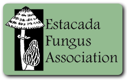 Estacada Fungus Association